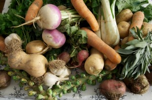 stoneledge farms CSA (Community Supported Agriculture) Local Farming Week Twenty-Two